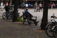 Hague leaves