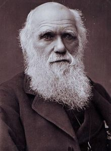 400px-charles_darwin_photograph_by_herbert_rose_barraud_1881