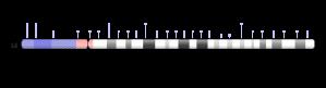 chr-15